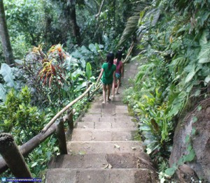 Going down to Tinago Falls