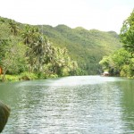 The Long Loboc River
