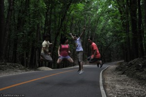 Enjoying at Bohol man-made forest