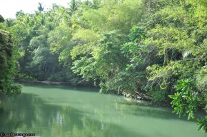 A view of Loboc River from the Bridge