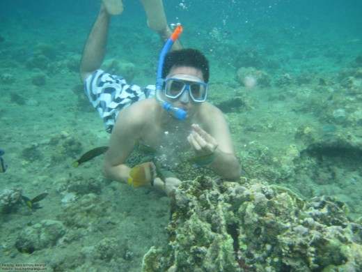 Underwater snorkeling: Jim Ray feeding the fishes