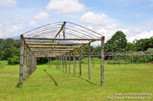 Bamboo Shelter to be used during gatherings