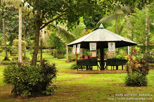 Cottage at Philippine Eagle Center