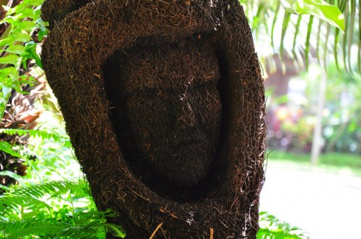 Face designed from dried plant stem