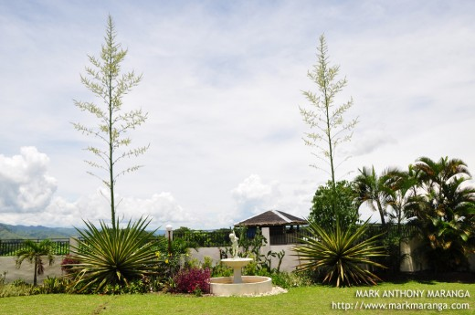 Loiza S Pavilion Garden Wedding Haven Philippines Tour