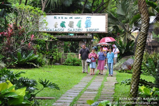Guest brisk walking at Malagos Garden Resort