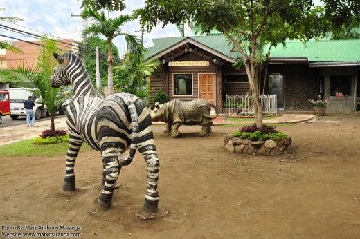Zebra and Hippo inside the Park