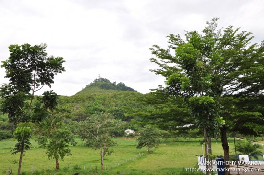 A view of Mount Musuan near Central Mindanao University