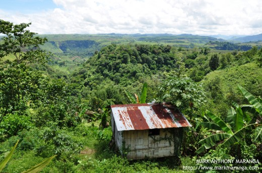 Lush Greenery Panoramic View of Bukidnon