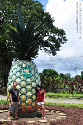 Big Pineapple with Mark and Lisa