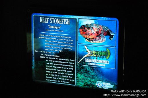 Information at the bottom of each aquarium