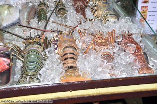 Lobsters in Ice