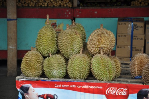 Durian for Sale
