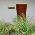 Siargao Office