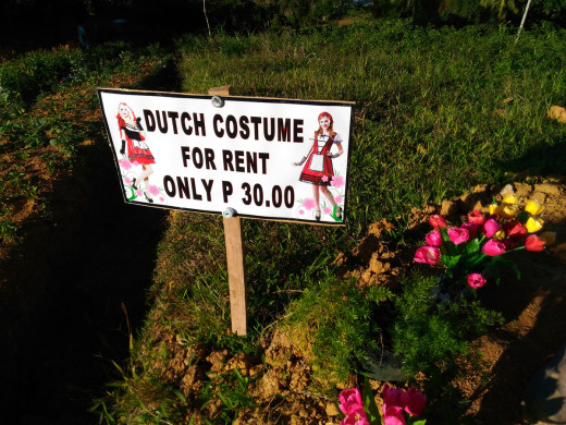 Dutch Costume for Rent