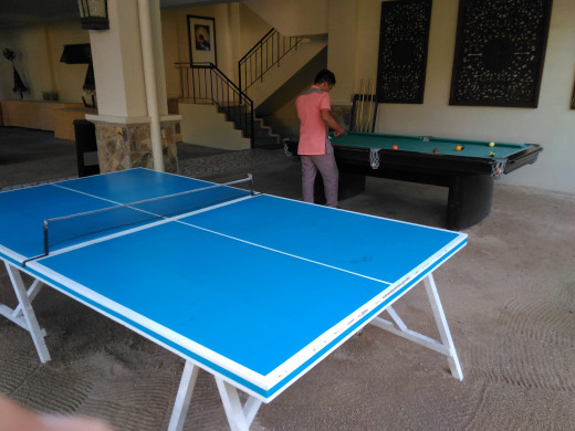 Table Tennis and Billard Table for Guests